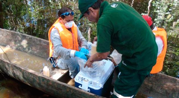 Autoridad Nacional Agua evalúa y toma muestras agua zona derrame crudo Loreto