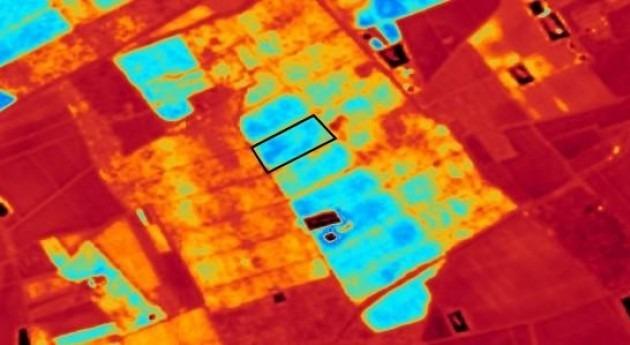 Técnicas análisis imagen aplicadas agricultura