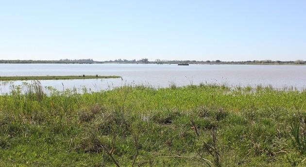 Coca-Cola financia proyecto mejora gestión agua entorno Doñana