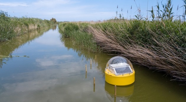 sistema medición tiempo real monitorizará agua l'Albufera