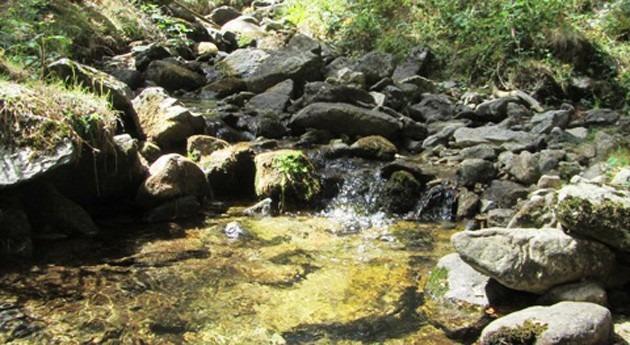 Sierra Guadarrama: fábrica lluvia (y 2)