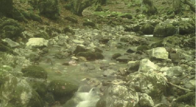 importancia agua más allá agua