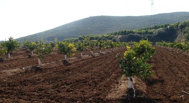INE presenta Encuesta uso agua sector agrario realizada 2011