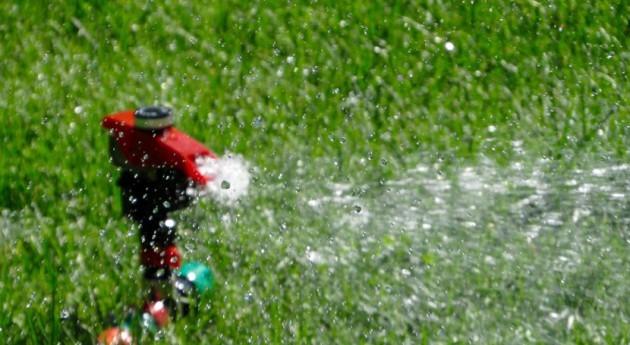 aguas España e Italia, poco protegidas frente nitratos origen agrario