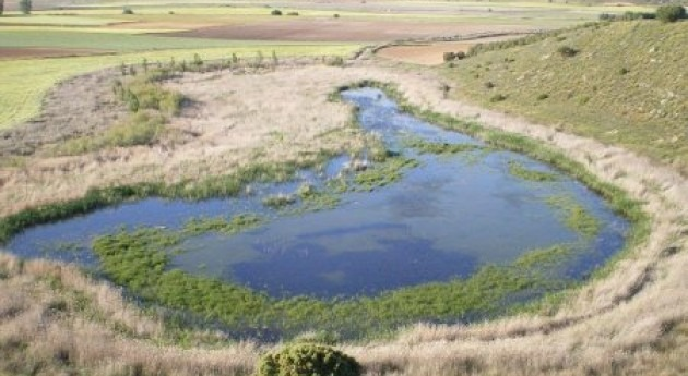 Ecologistas Acción denuncia incumplimiento DIA laguna Capellanes