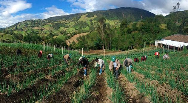 América Latina y Caribe avanzan políticas agroambientales frente al cambio climático