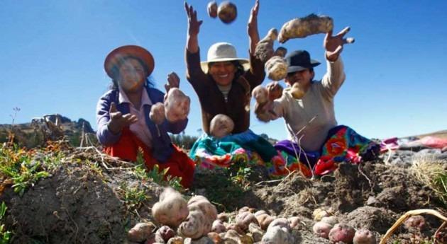 Perú establece consulta pública proyecto ley Organizaciones Usuarios Agua