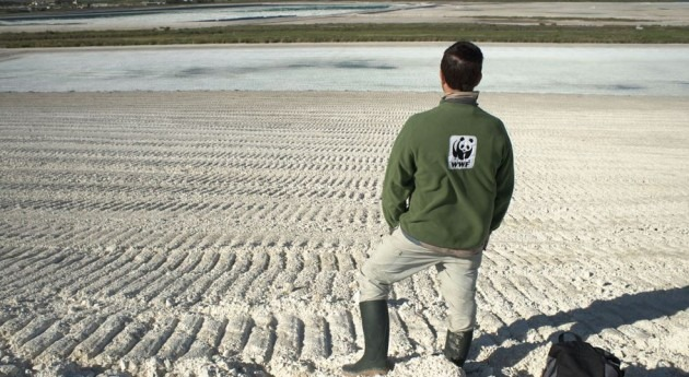 Imagen de la marisma, de WWF.