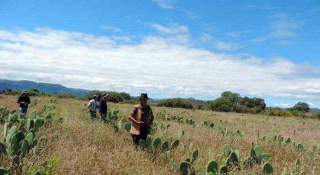 Gobierno boliviano da inicio tres proyectos manejo integral microcuencas