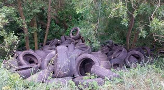 ACA limpia vertedero ilegal neumáticos junto al río Muga