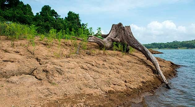 Panamá Central suma ya tres años grave sequía