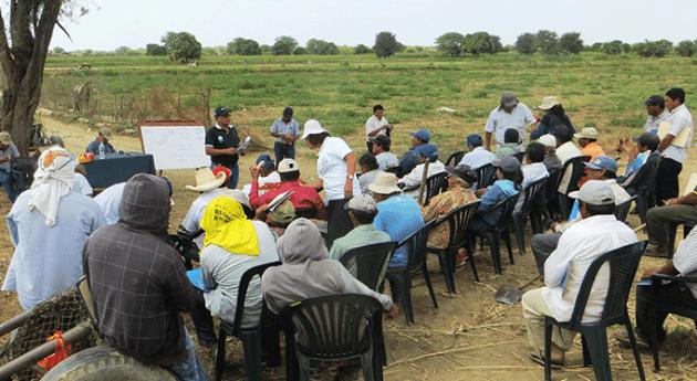 Autoridad Nacional Agua capacita productores agrarios valle Medio y Piura