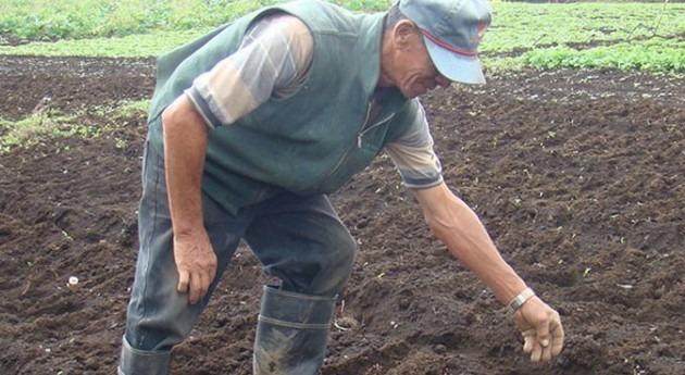 ¿Cómo ayudar pequeños agricultores enfrentar cambio climático?