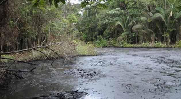 contaminación petrolera Amazonas está modificando composición química agua