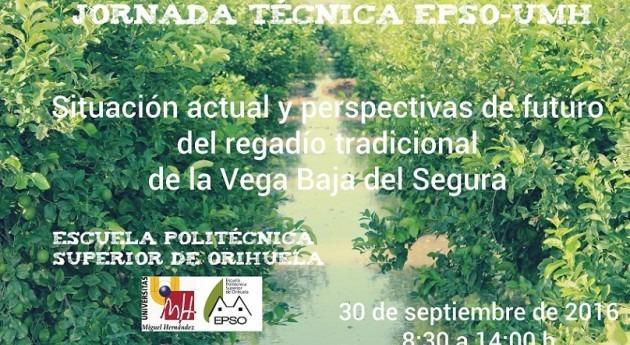 Situación actual y perspectivas futuro regadío tradicional Vega Baja Segura