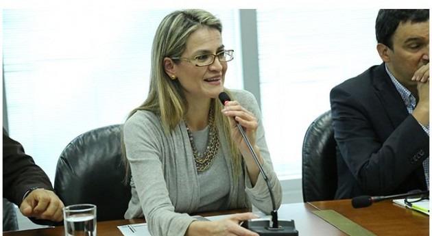 Viceministra de agua, María Carolina Castillo.