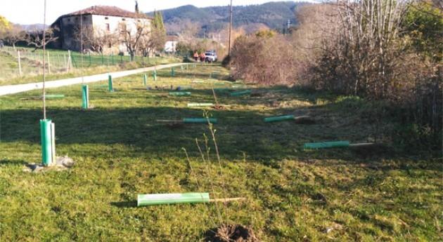 Estudiantes Amurrio plantan hoy árboles margen izquierda Nervión