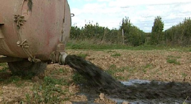 Seprona actúa 3 personas contaminar acuífero Fuente Salguera purines
