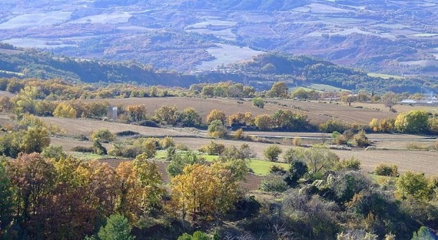 Seprona descubre Biscarri vertido purines realizado directamente campos cultivo