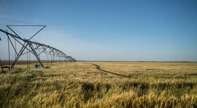 Comunidad Valenciana establece exención económica asociada al uso agua desalada