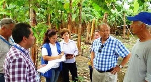 razones baja producción agrícola hectárea cultivo Ecuador es riego tradicional