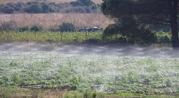 Riego fotovoltaico agricultura sostenible y modernizada