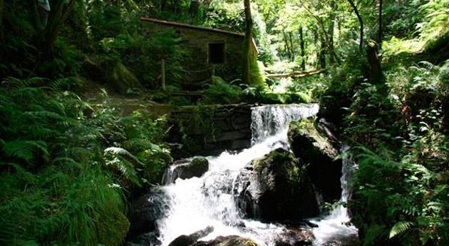 entorno río Abelleira Carral, será declarado provisionalmente ENIL