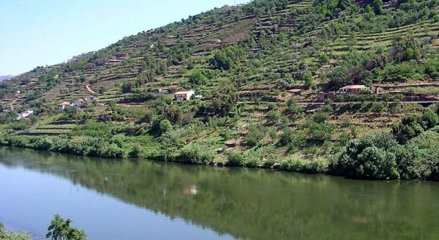 Luz verde 2 fase obras cauces dañados crecidas cuenca Duero