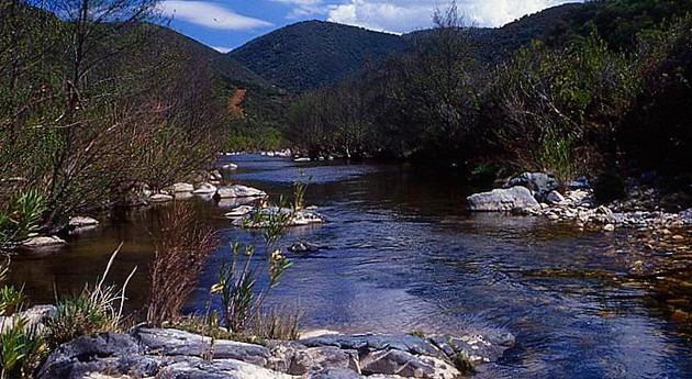 ríos y arroyos Sevilla y Huelva verán mejorados cauces