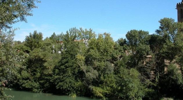 Navarra pide participar declaración impacto ambiental mina potasa Sangüesa