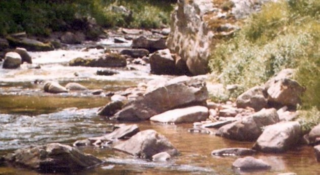 Río Híjar (Wikipedia).