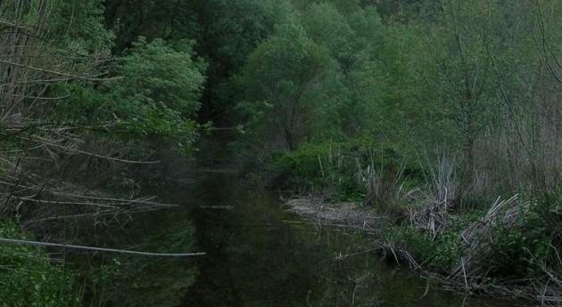 Cataluña amplía y mejora regadío río Monsant
