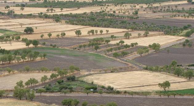 Esta semana se realizará primer trasvase Júcar al Vinalopó hacer frente sequía Alicante