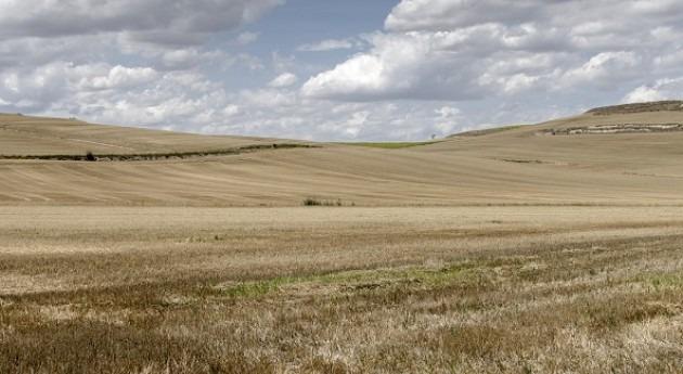 campo de secano