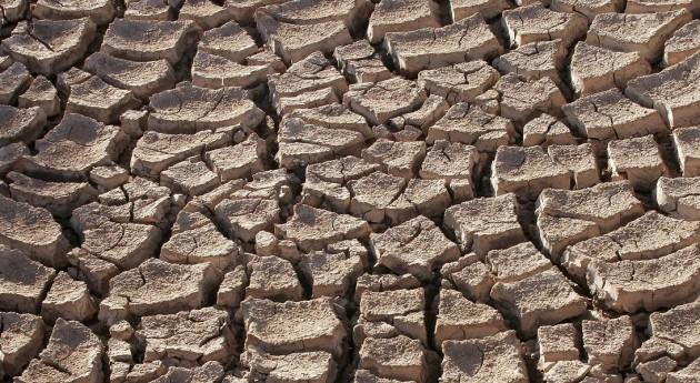 Se declara emergencia agropecuaria Salta y Formosa sequía y heladas
