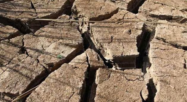 La sequía amenaza la seguridad alimentaria en Guatemala, El Salvador y Honduras (PMA/Phil Behan)