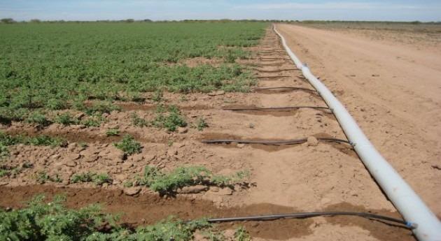 Análisis y propuestas mejora sistema riego Culiacán-Humaya