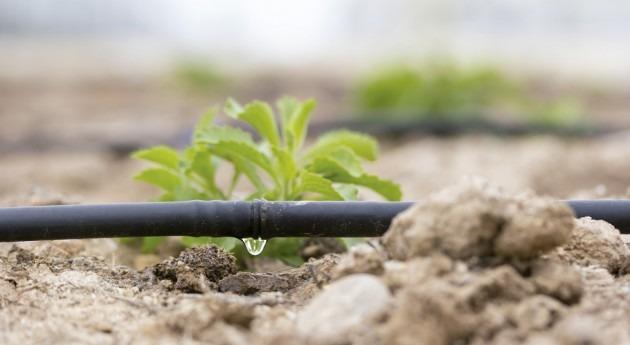 ABB aumenta eficiencia agua agricultura variadores frecuencia