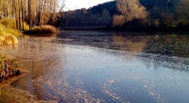 Ecologistas denuncian falta control ambiental arroyo Valcorba, Soria