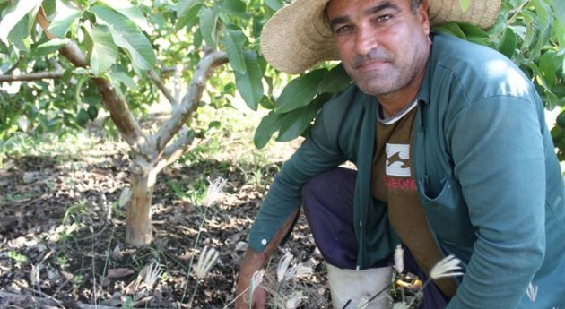 Así es lucha 'super' pequeños agricultores cambio climático