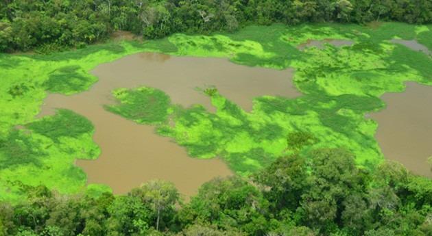 Lagos Tarapoto, nuevo humedal Ramsar Colombia