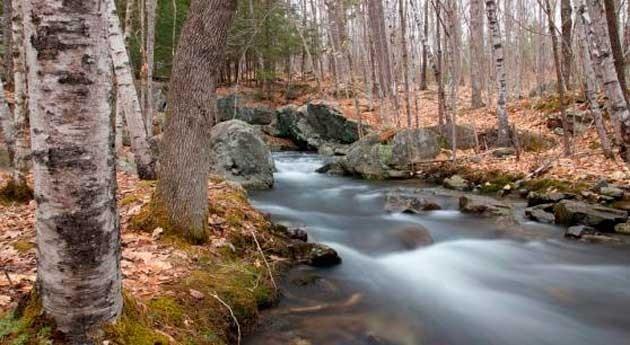 Contratos opción y suministro agua, tema Mejor Tesis Doctoral Cátedra Aquae