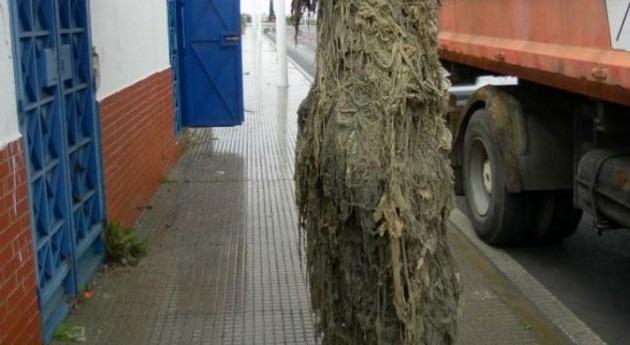 Arrigorriaga se une lucha vertido toallitas higiénicas inodoro
