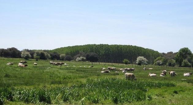 Unió Pagesos pide retirada canon agua explotaciones ganaderas