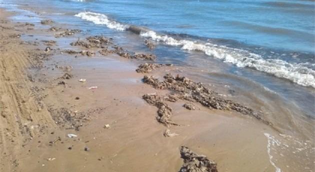 Cerrada playa Alboraya causa vertidos emisario Vera tormenta
