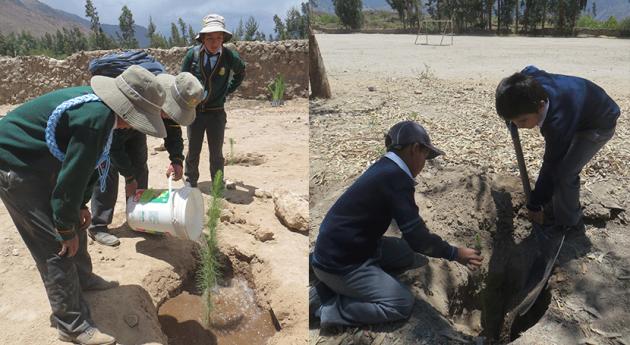 Vigilantes Agua Perú siembran plantones Semana Acción Forestal