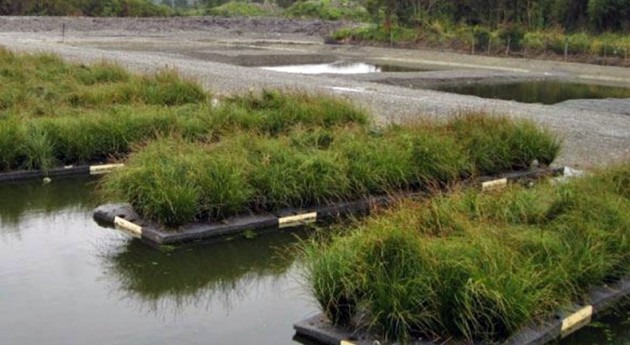 Humedales artificiales depurar aguas residuales pequeñas poblaciones