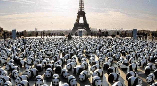 100 días Cumbre París, WWF exige más ambición clima