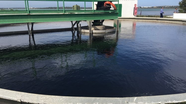 Diseño Estación Depuradora Aguas Residuales tecnologías convencionales
