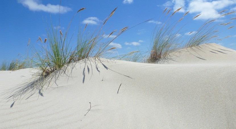 Salvemos Cabana recomienda proteger dunas Enseada da Ínsua 12 al 14 agosto